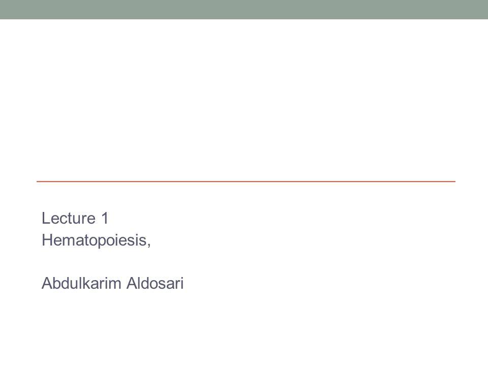 Lecture 1 Hematopoiesis, Abdulkarim Aldosari