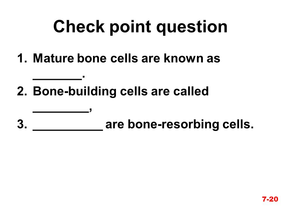 Check point question Mature bone cells are known as _______.