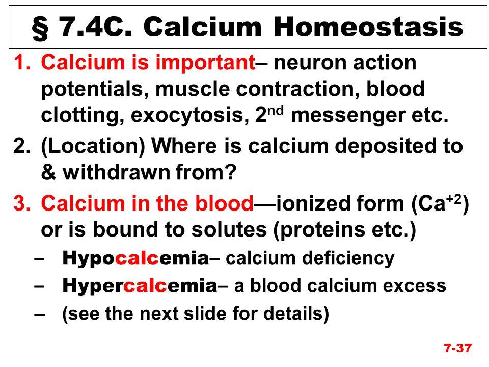 § 7.4C. Calcium Homeostasis