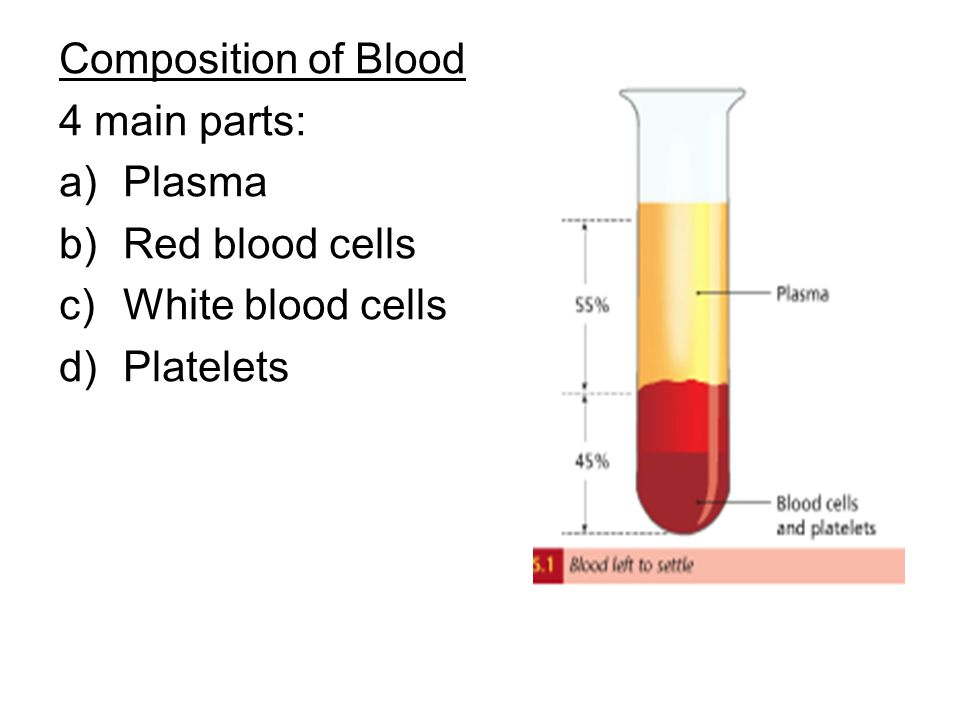 Composition of Blood 4 main parts: Plasma Red blood cells White blood cells Platelets