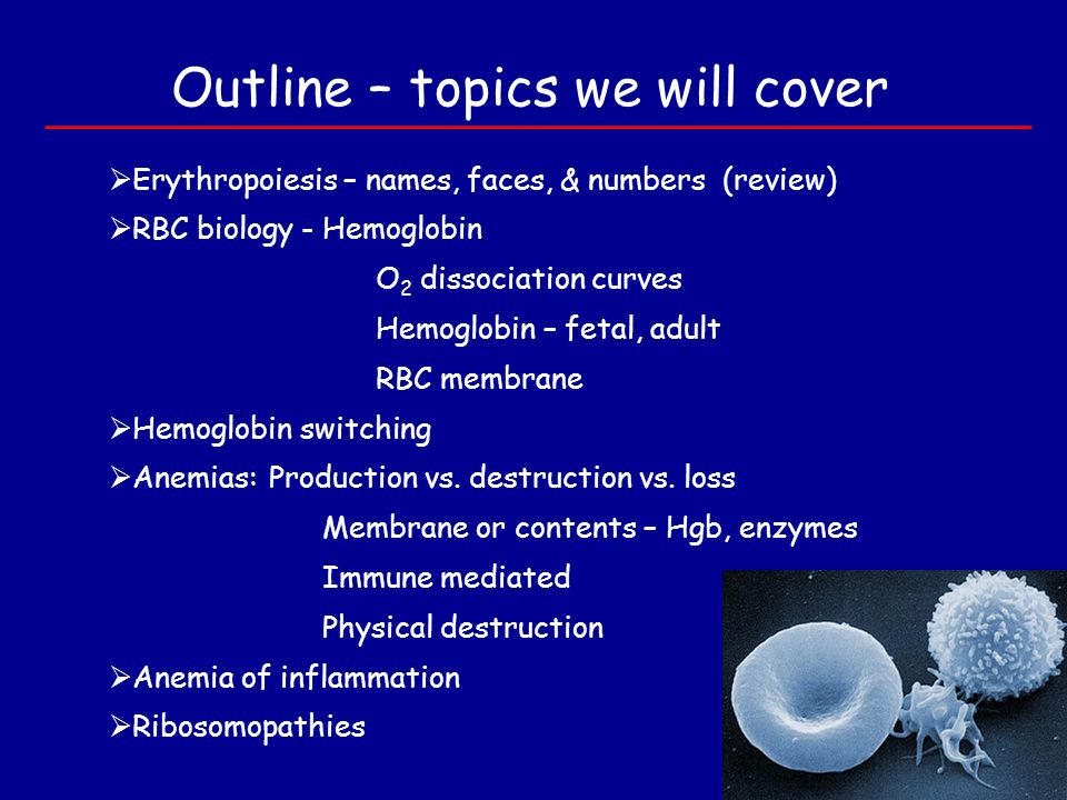 Outline – topics we will cover