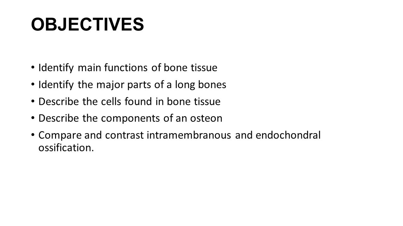 OBJECTIVES Identify main functions of bone tissue