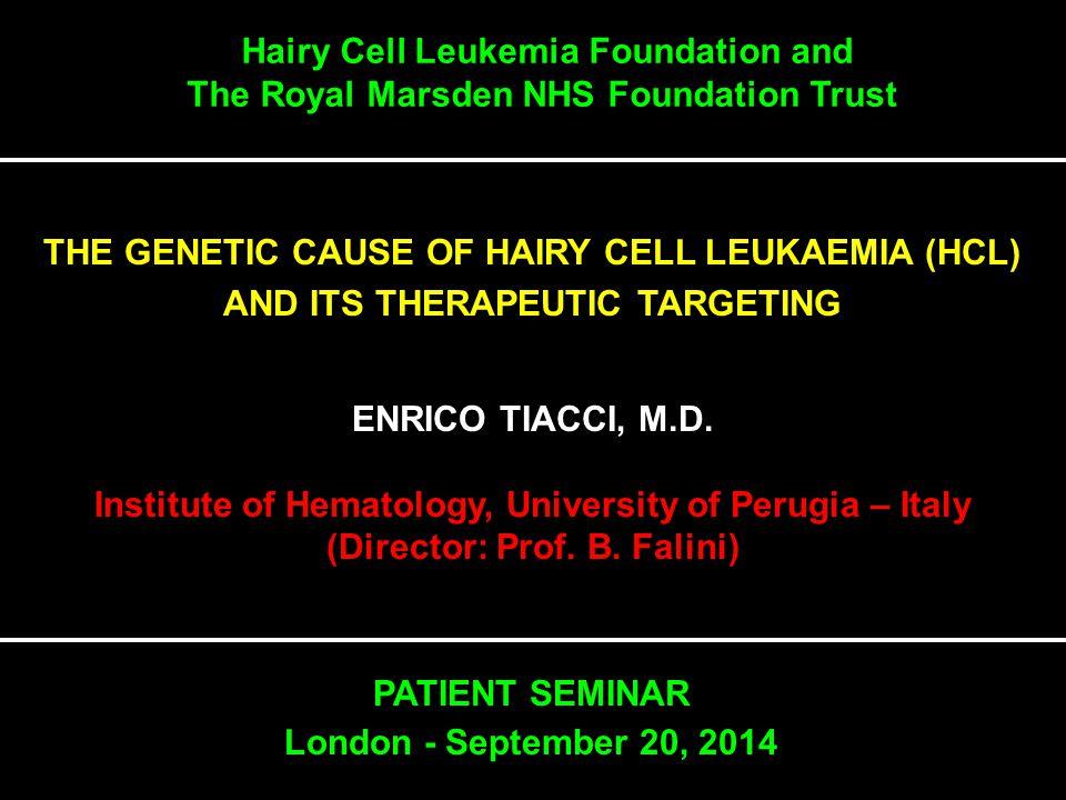 Hairy Cell Leukemia Foundation and