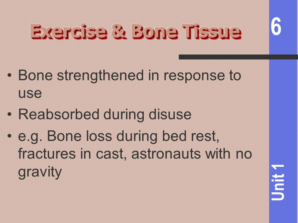 Exercise & Bone Tissue Bone strengthened in response to use