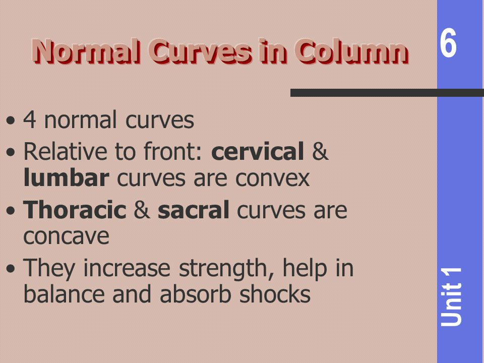 Normal Curves in Column