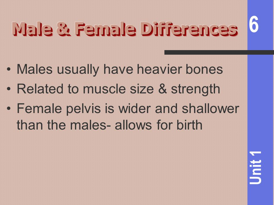 Male & Female Differences