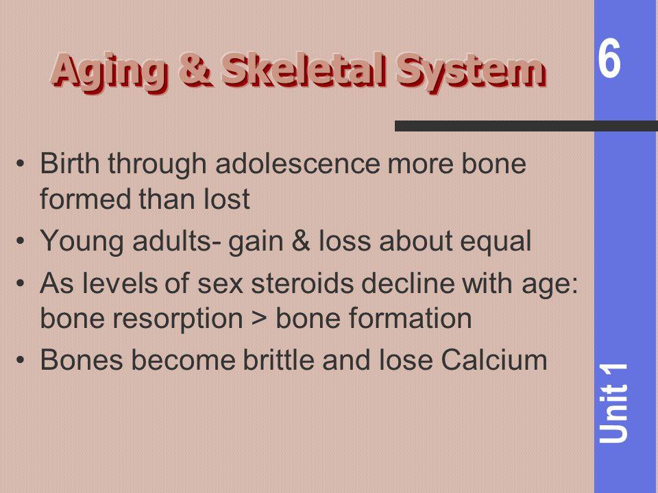 Aging & Skeletal System