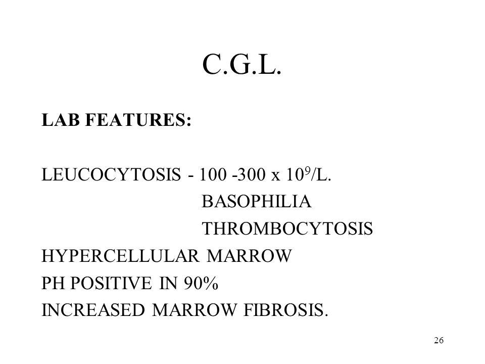 C.G.L. LAB FEATURES: LEUCOCYTOSIS - 100 -300 x 109/L. BASOPHILIA