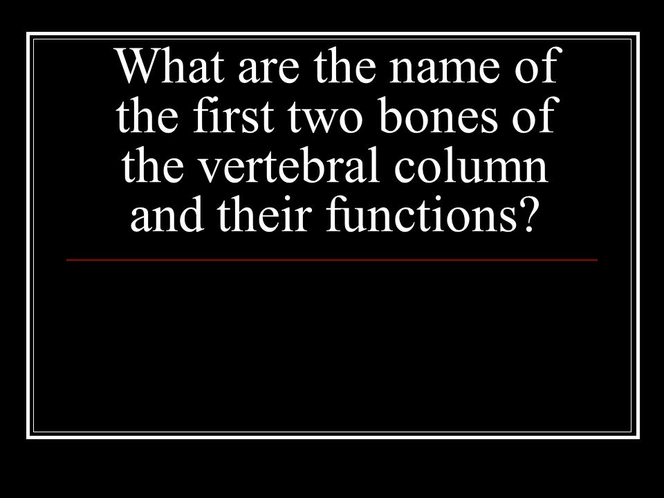 What are the name of the first two bones of the vertebral column and their functions