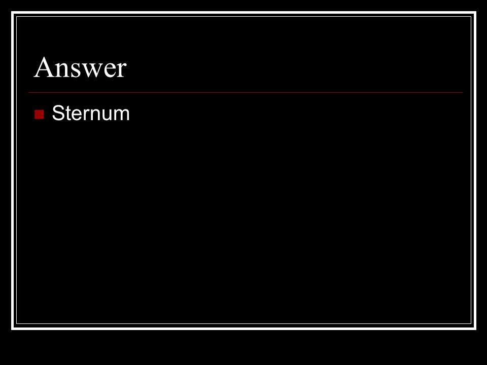Answer Sternum