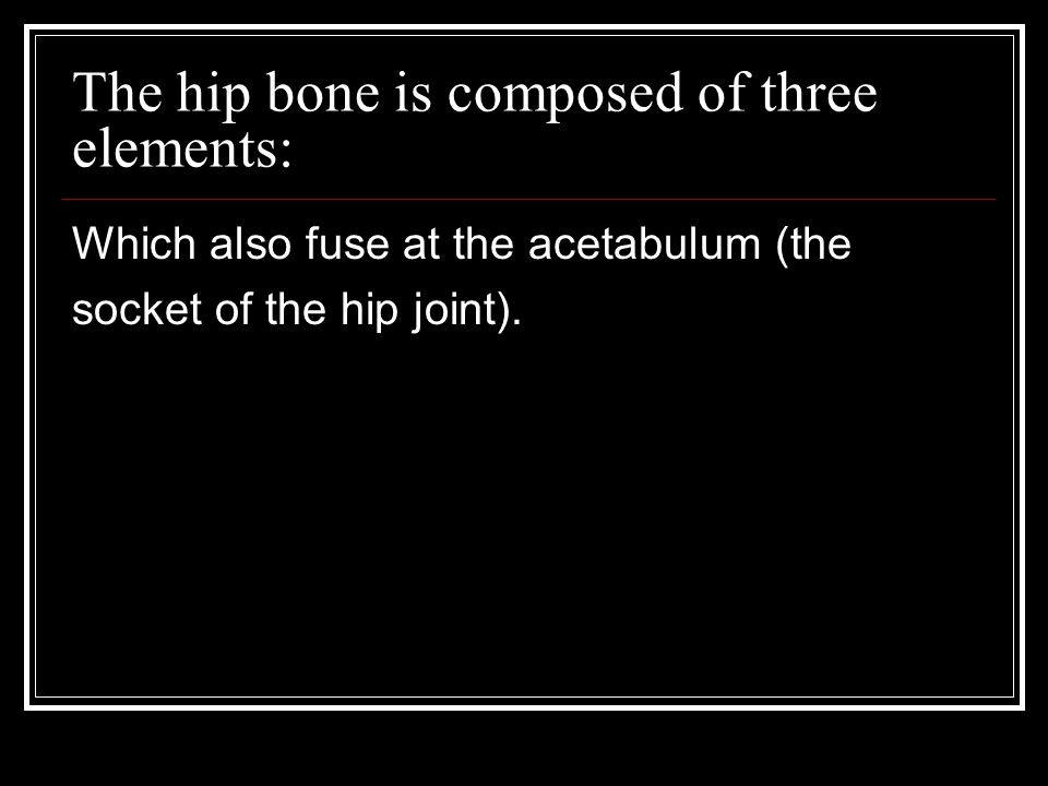 The hip bone is composed of three elements: