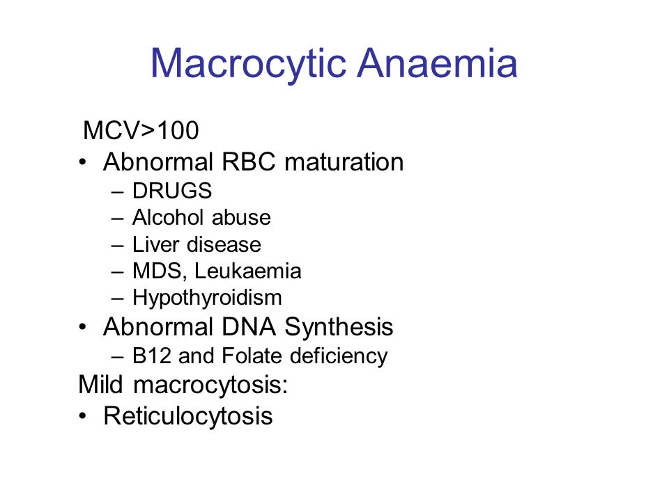Macrocytic Anaemia Abnormal RBC maturation Abnormal DNA Synthesis