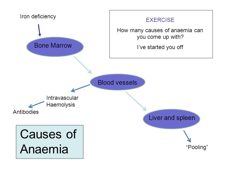 How many causes of anaemia can you come up with