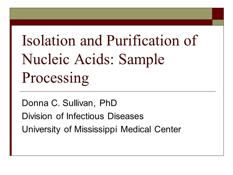 isolation and characterization of nucleic acids Isolation and physical characterization of a stable core particle  and physical characterization nucleic acids res  a isolation and characterization of the.
