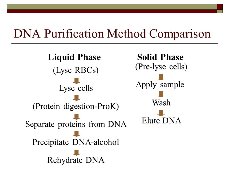 DNA Purification Method Comparison