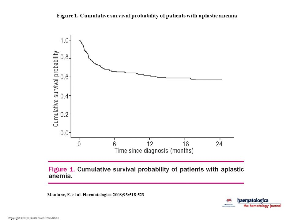 Figure 1. Cumulative survival probability of patients with aplastic anemia