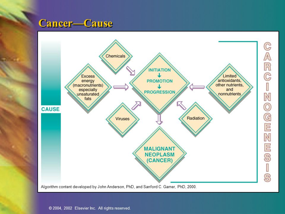 Cancer—Cause Algorithm content developed by John Anderson, PhD, and Sanford C. Garner, PhD, 2000.