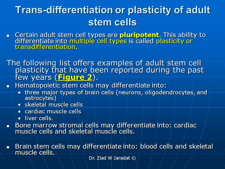 Trans-differentiation or plasticity of adult stem cells