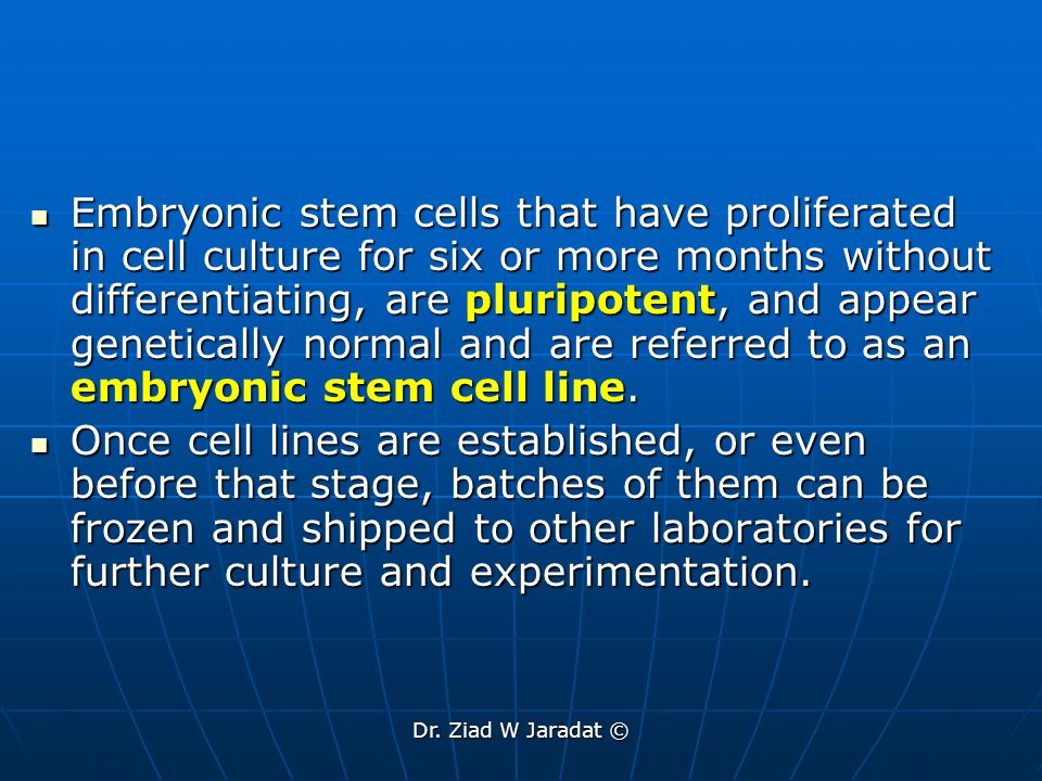 Embryonic stem cells that have proliferated in cell culture for six or more months without differentiating, are pluripotent, and appear genetically normal and are referred to as an embryonic stem cell line.