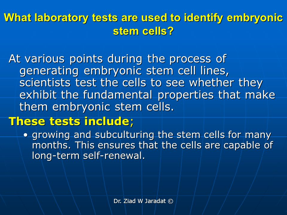 What laboratory tests are used to identify embryonic stem cells