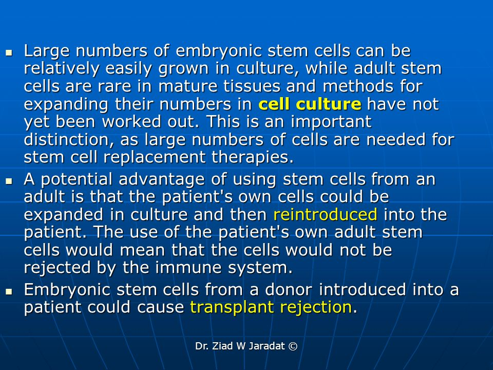 Large numbers of embryonic stem cells can be relatively easily grown in culture, while adult stem cells are rare in mature tissues and methods for expanding their numbers in cell culture have not yet been worked out. This is an important distinction, as large numbers of cells are needed for stem cell replacement therapies.