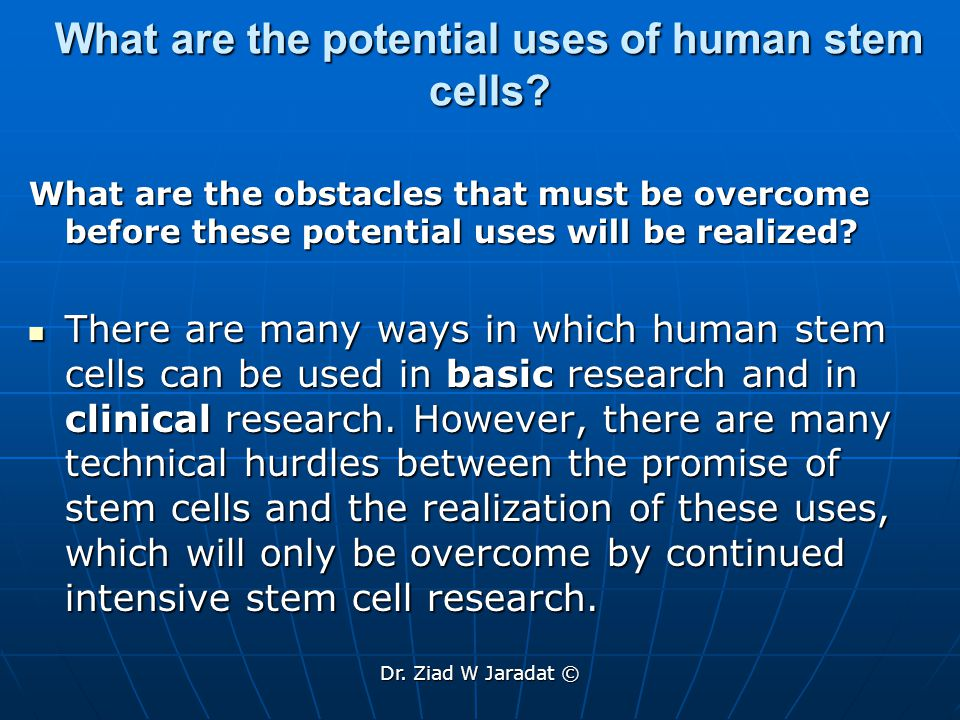 What are the potential uses of human stem cells