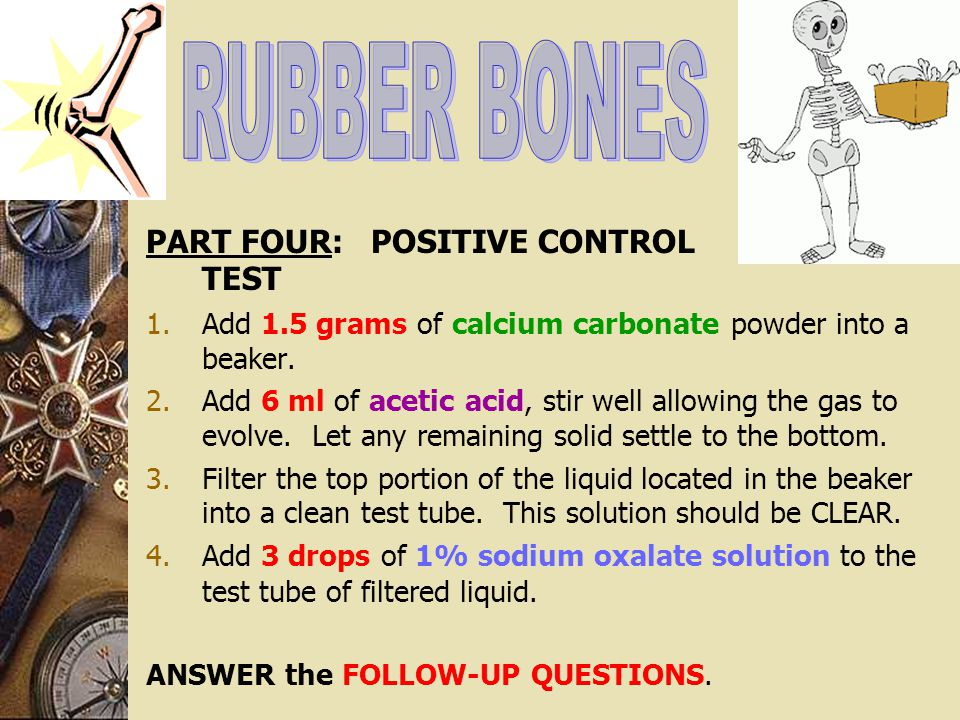 RUBBER BONES PART FOUR: POSITIVE CONTROL TEST