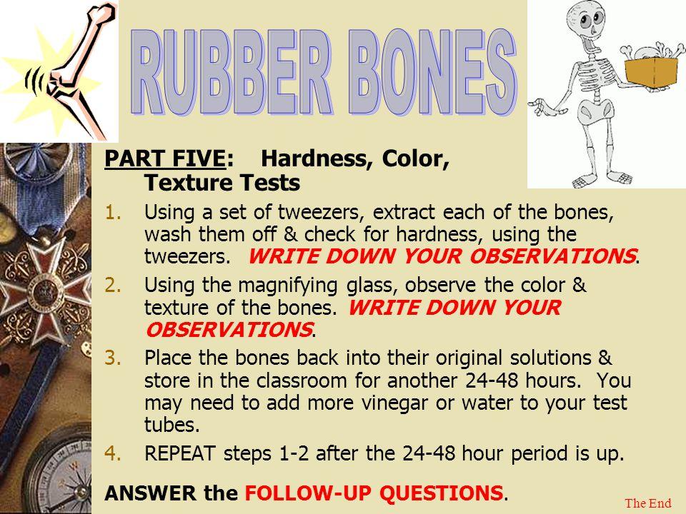 RUBBER BONES PART FIVE: Hardness, Color, Texture Tests