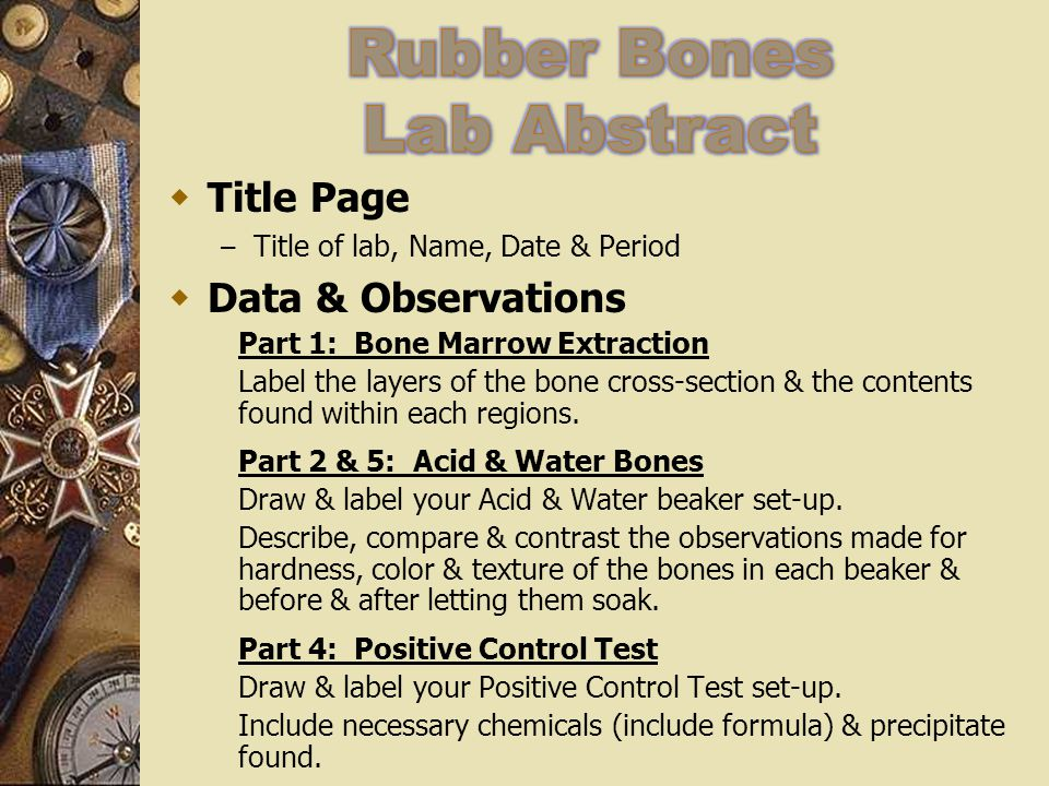 Rubber Bones Lab Abstract