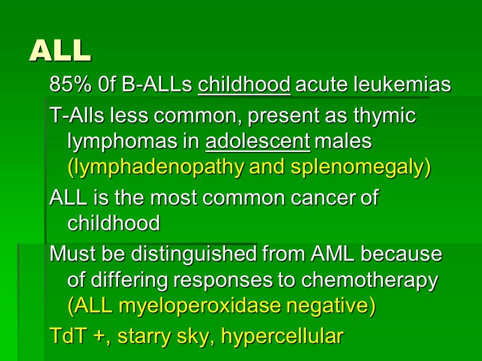 ALL 85% 0f B-ALLs childhood acute leukemias