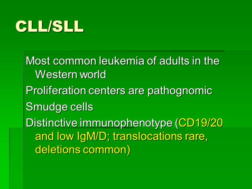 CLL/SLL Most common leukemia of adults in the Western world
