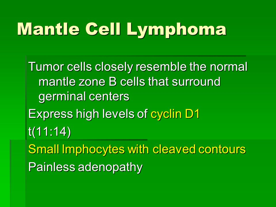 Mantle Cell Lymphoma Tumor cells closely resemble the normal mantle zone B cells that surround germinal centers.