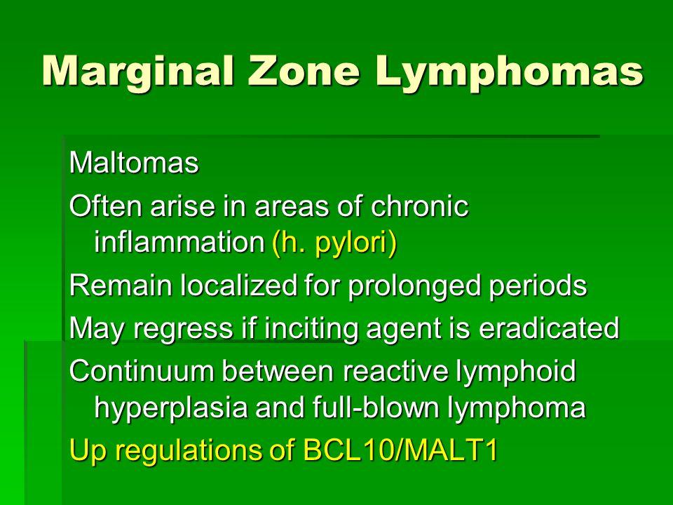 Marginal Zone Lymphomas