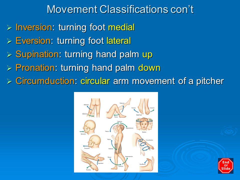 Movement Classifications con't