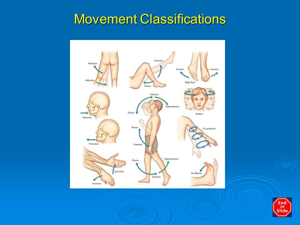 Movement Classifications