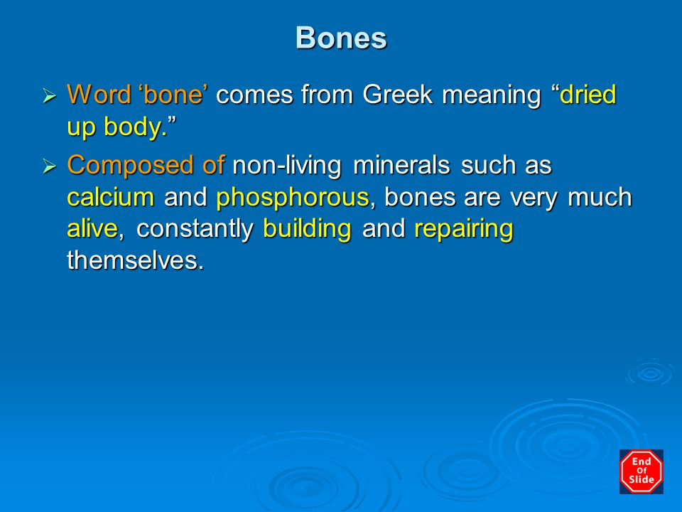 Bones Word 'bone' comes from Greek meaning dried up body.