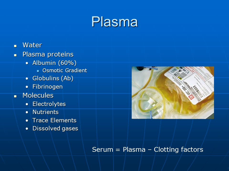 Plasma Water Plasma proteins Molecules
