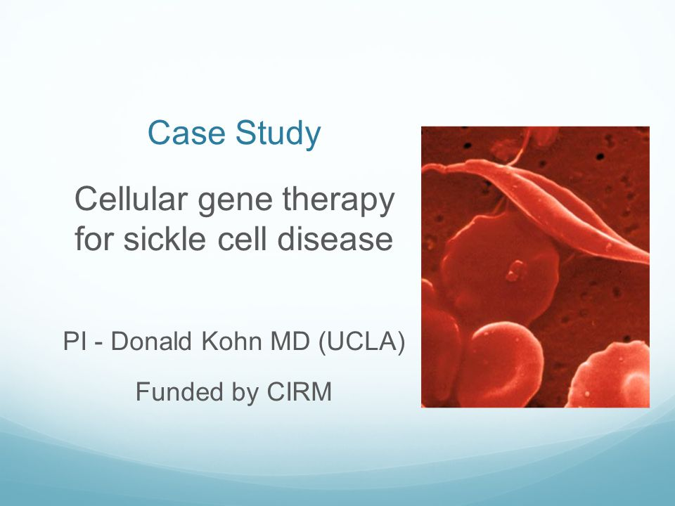 Cellular gene therapy for sickle cell disease