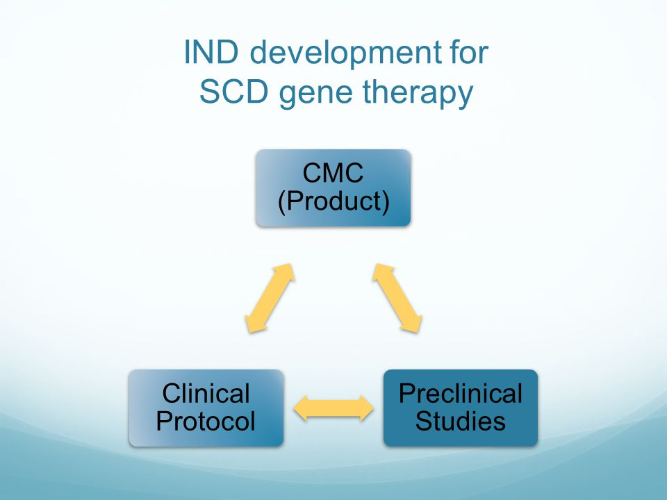 IND development for SCD gene therapy