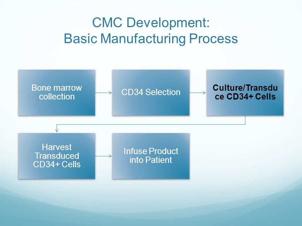 CMC Development: Basic Manufacturing Process