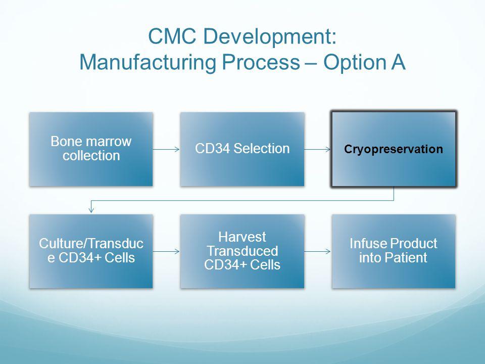 CMC Development: Manufacturing Process – Option A
