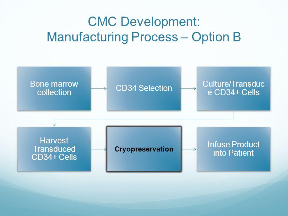 CMC Development: Manufacturing Process – Option B
