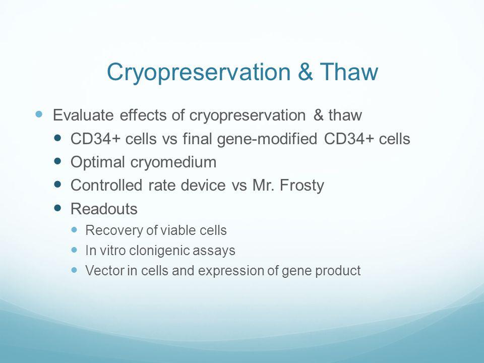 Cryopreservation & Thaw