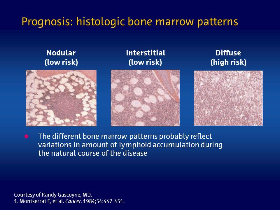 Prognosis: histologic bone marrow patterns