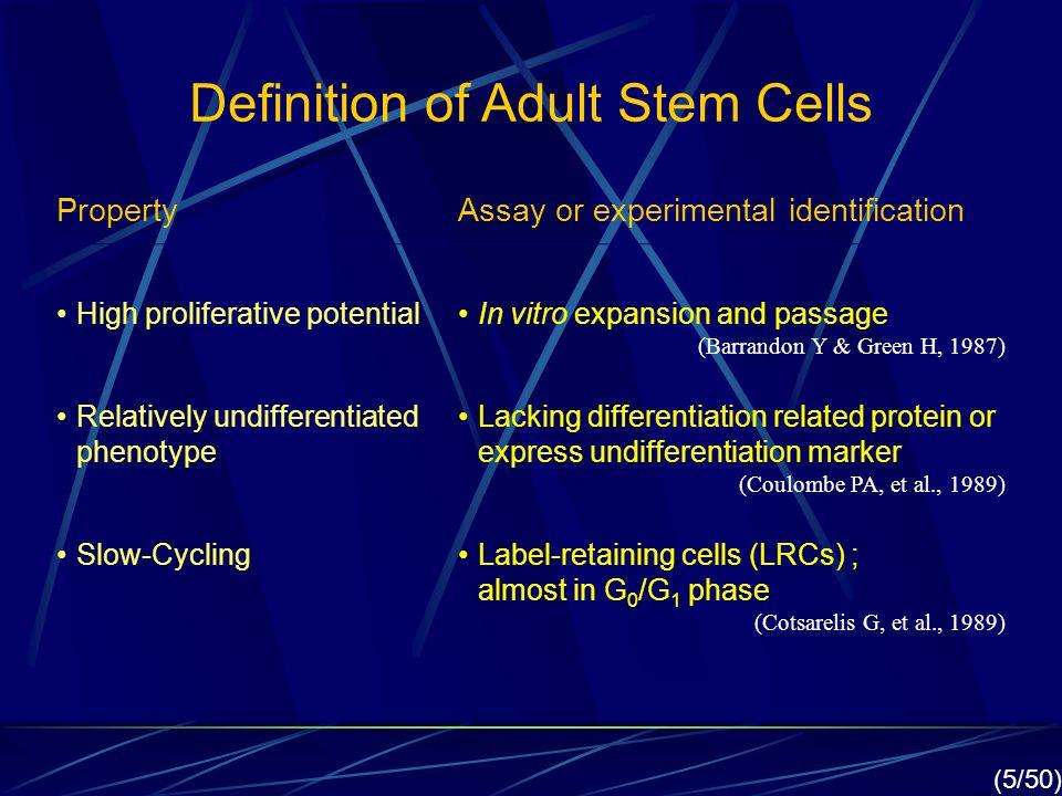Definition of Adult Stem Cells