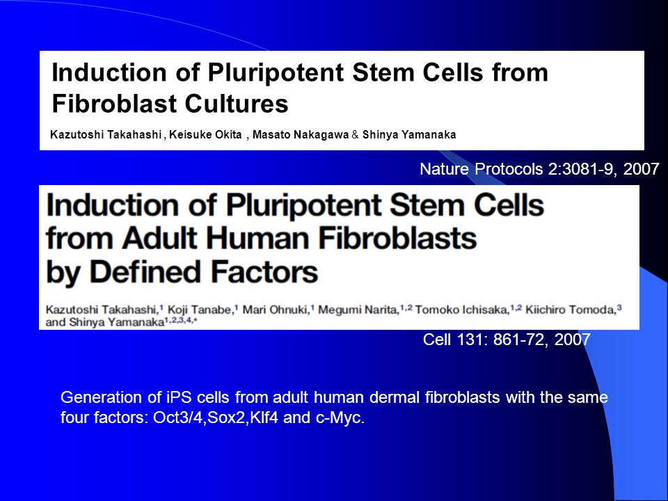 Induction of Pluripotent Stem Cells from Fibroblast Cultures