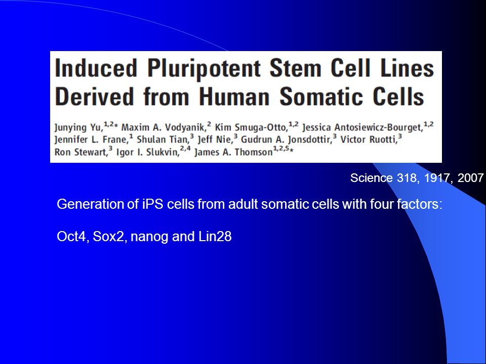 Generation of iPS cells from adult somatic cells with four factors:
