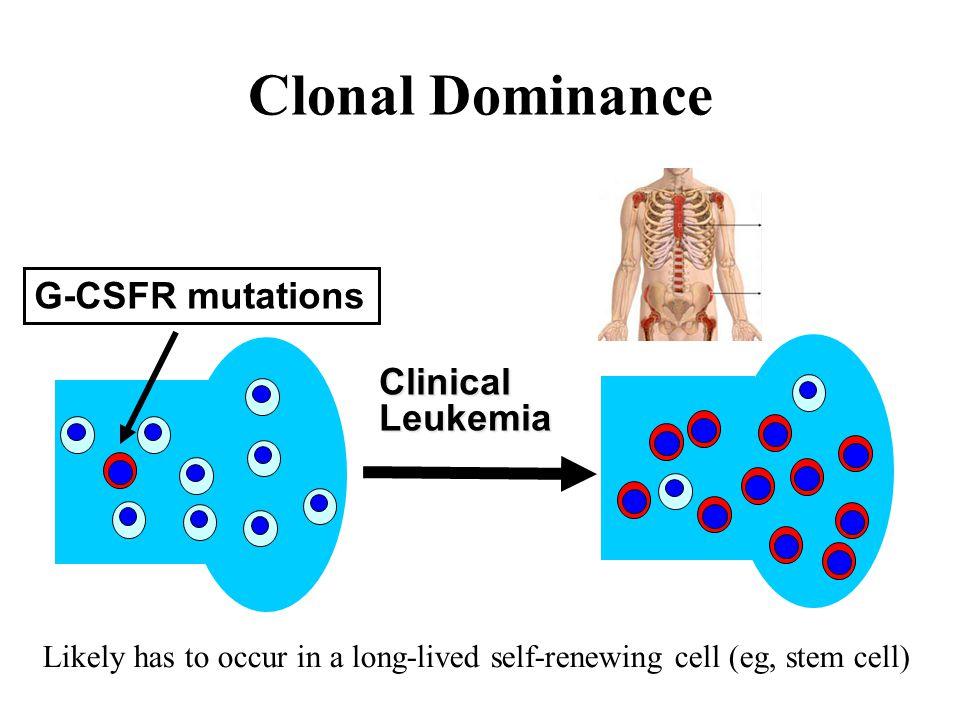 Clonal Dominance G-CSFR mutations Clinical Leukemia