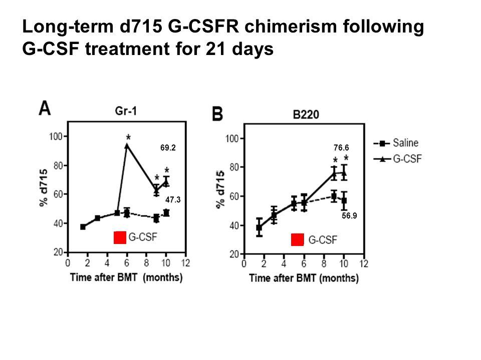 Long-term d715 G-CSFR chimerism following G-CSF treatment for 21 days