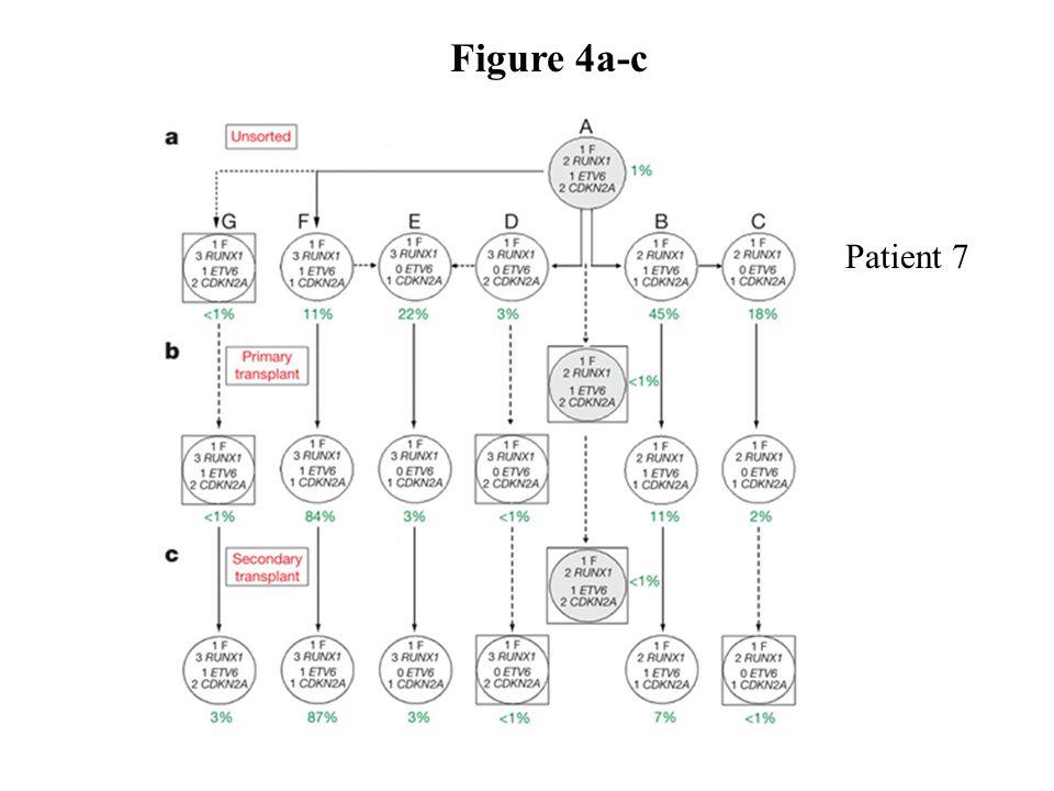 Figure 4a-c Patient 7.